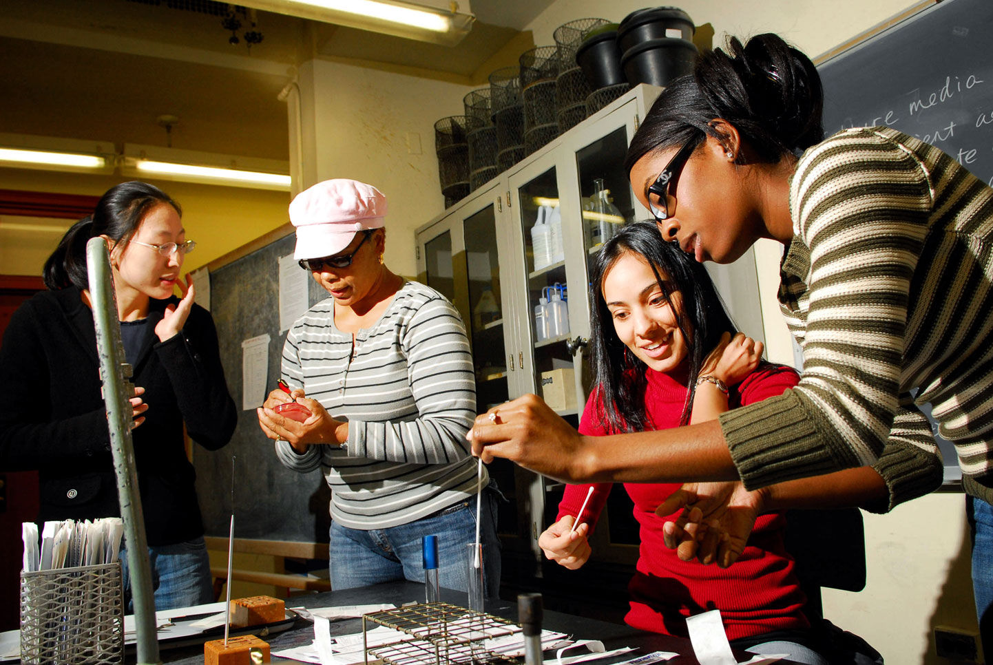 Lehman College STEM; National Science Foundation Grant